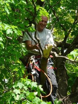james bourjeaurd arborist