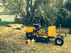 stump-grinder-barrie