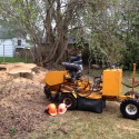 stump-grinding-professionals